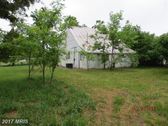 16072 Countyline Church Road, Ruther Glen, VA 22546 (#CV10000400) :: LoCoMusings