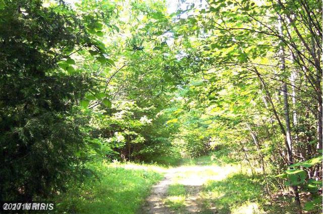 Countyline Church Road, Woodford, VA 22580 (#CV10062318) :: Pearson Smith Realty