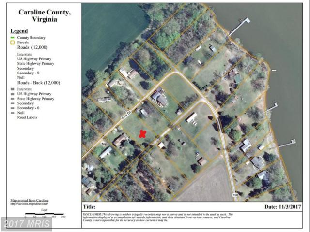 Eva Drive - Lot 17 Sec 3 Drive, Port Royal, VA 22535 (#CV10096409) :: AJ Team Realty