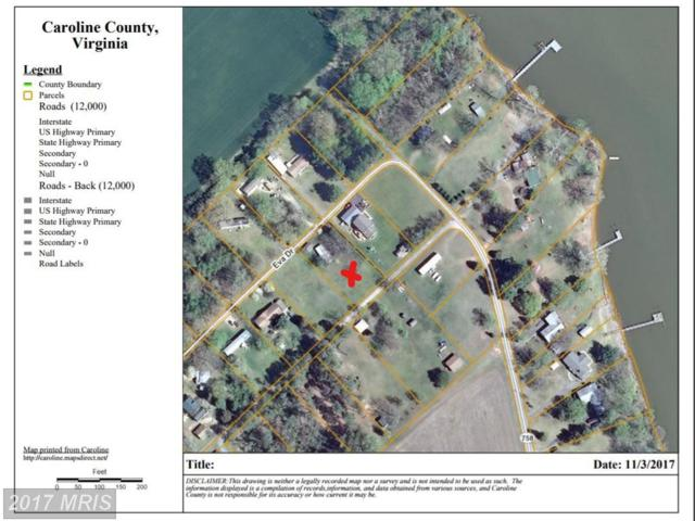 Eva Drive - Lot 18 Sec 3 Drive, Port Royal, VA 22535 (#CV10096410) :: AJ Team Realty
