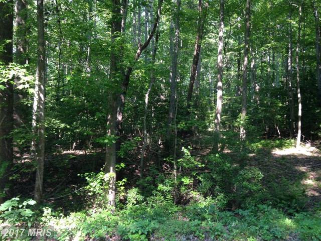 Jeffrey Rd, Ruther Glen, VA 22546 (#CV10104121) :: Green Tree Realty