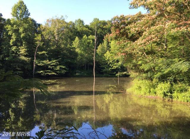 0 Fork Bridge Road, Milford, VA 22514 (#CV10126684) :: AJ Team Realty