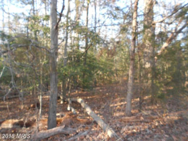 0 Rogers Clark Boulevard, Bowling Green, VA 22427 (#CV10130414) :: Green Tree Realty