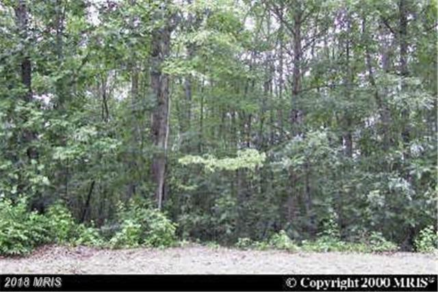26678 Ruther Glen Road, Ruther Glen, VA 22546 (#CV10134923) :: Green Tree Realty