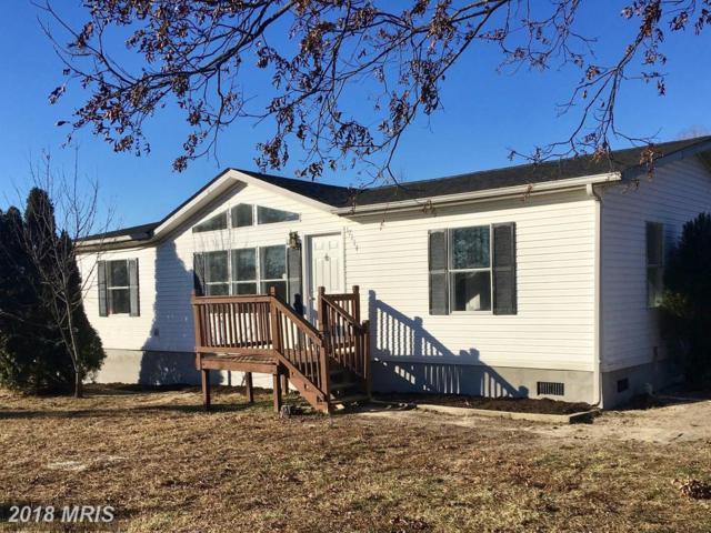 17114 Liberty Fork Road, Bowling Green, VA 22427 (#CV10158177) :: Green Tree Realty