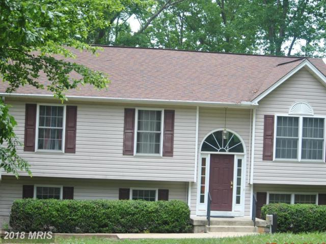512 Redground Drive, Ruther Glen, VA 22546 (#CV10243467) :: Green Tree Realty