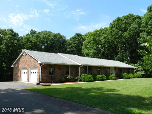 18133 Harding Drive, Bowling Green, VA 22427 (#CV10275835) :: Green Tree Realty