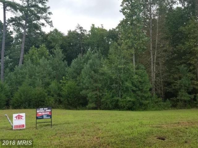 18024 Coolidge Lane, Bowling Green, VA 22427 (#CV10317636) :: Green Tree Realty