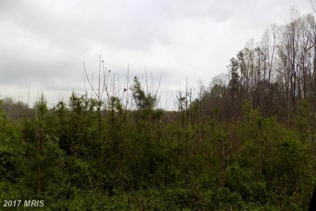 Country Rd - Lot 2, Beaverdam, VA 23015 (#CV9893632) :: LoCoMusings