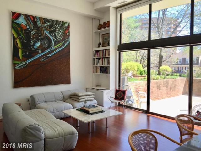 3101 New Mexico Avenue NW #238, Washington, DC 20016 (#DC10183230) :: ExecuHome Realty