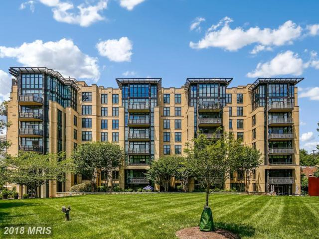 4301 Military Road NW #502, Washington, DC 20015 (#DC10297470) :: Keller Williams Pat Hiban Real Estate Group