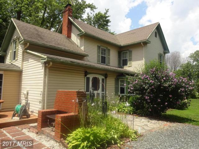 2218 Jenkins Creek Road, Cambridge, MD 21613 (#DO10001056) :: Pearson Smith Realty