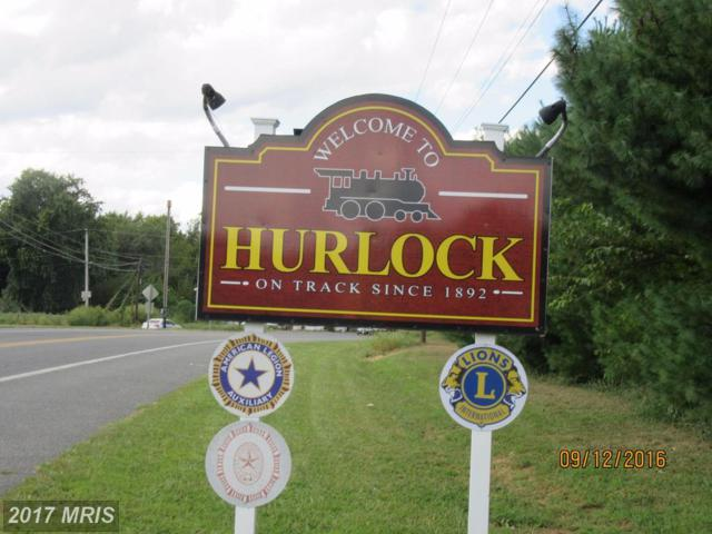 Petersburg Road S, Hurlock, MD 21643 (MLS #DO10012876) :: RE/MAX Coast and Country
