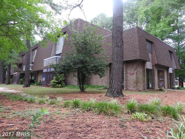 515 Glenburn Avenue 205C, Cambridge, MD 21613 (#DO10018678) :: Pearson Smith Realty