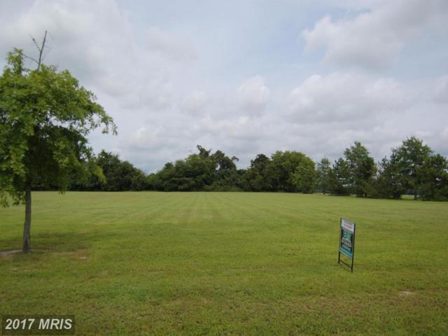 Oak Creek Landing, Hurlock, MD 21643 (#DO10024296) :: Pearson Smith Realty