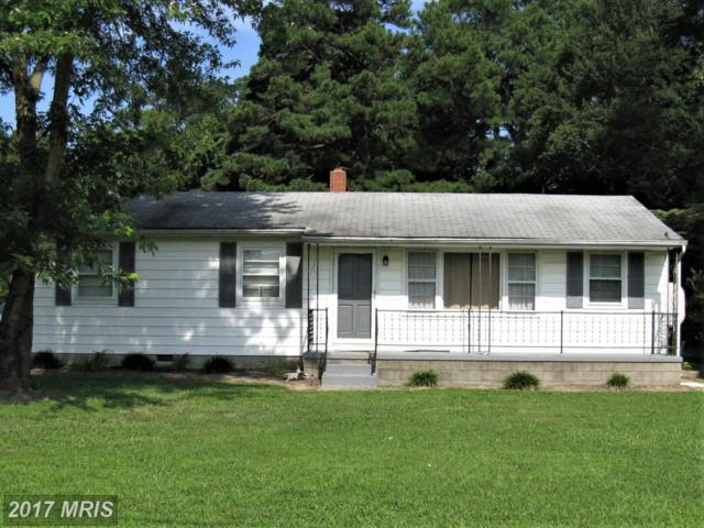 5312 Spring Drive, Cambridge, MD 21613 (#DO10026371) :: Pearson Smith Realty