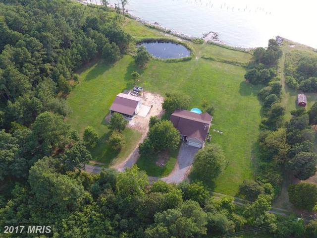 215 Oyster Cove Road, Taylors Island, MD 21669 (#DO10035804) :: Pearson Smith Realty