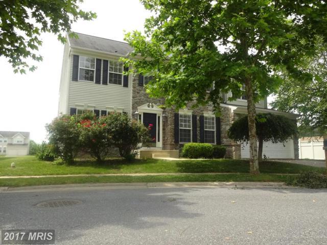 414 Caribbean Avenue, Cambridge, MD 21613 (#DO10037758) :: Pearson Smith Realty