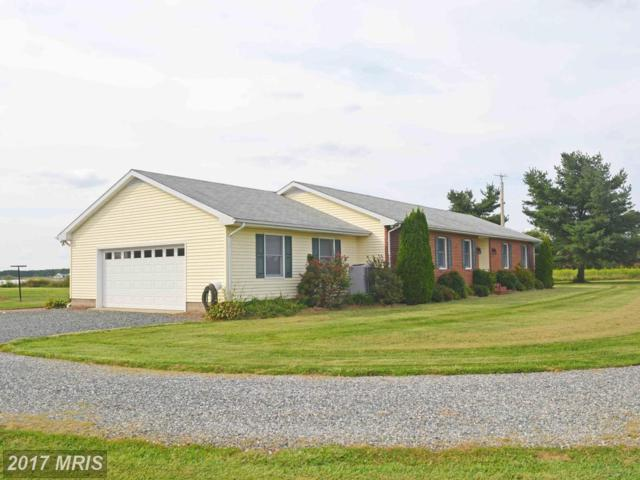 6040 Corners Wharf Road, Cambridge, MD 21613 (#DO10042627) :: Pearson Smith Realty