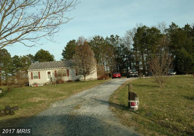6302 Arrowhead Drive, Hurlock, MD 21643 (#DO10058263) :: LoCoMusings