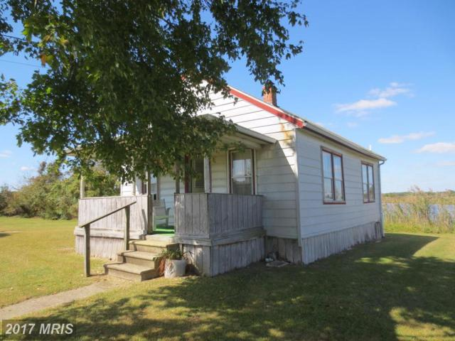 4000 Steele Neck Road, Vienna, MD 21869 (#DO10072490) :: Pearson Smith Realty