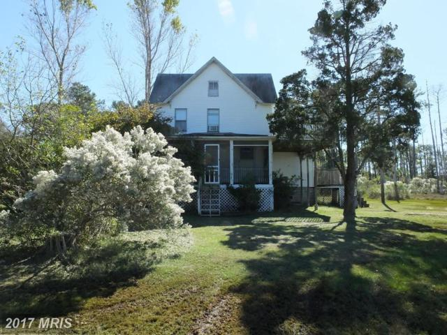 1860 Tedious Creek Road, Toddville, MD 21672 (#DO10086773) :: Pearson Smith Realty