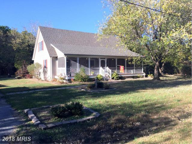 1008 River Point Road, Cambridge, MD 21613 (MLS #DO10137676) :: RE/MAX Coast and Country