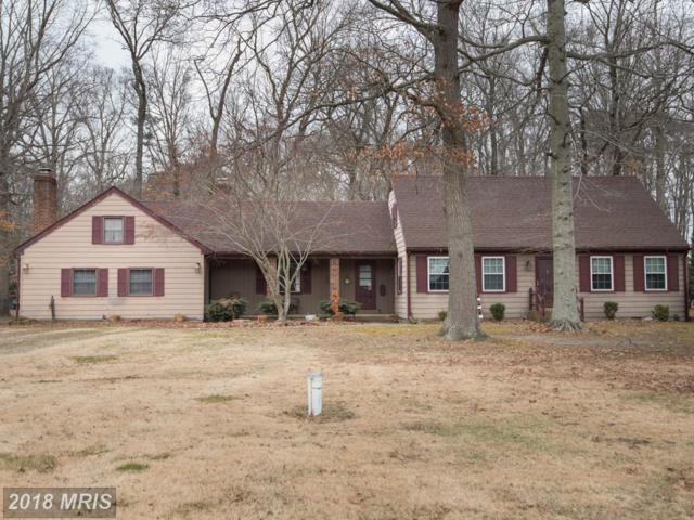 3318 Landrum Drive, East New Market, MD 21631 (MLS #DO10137880) :: RE/MAX Coast and Country