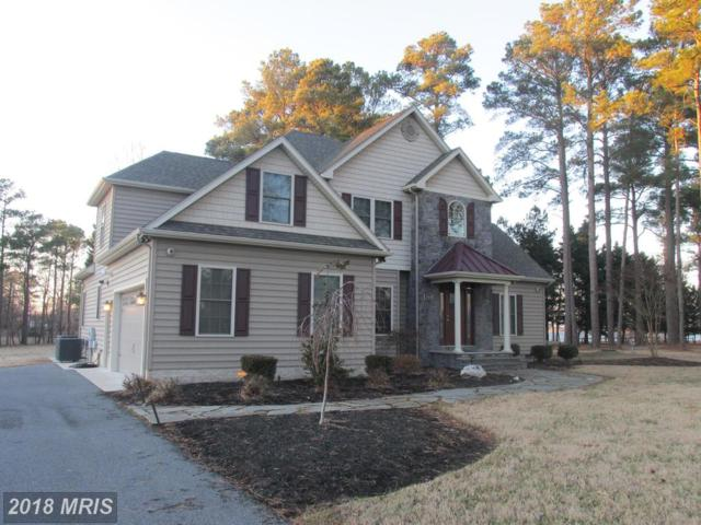 5464 Moose Lodge Road, Cambridge, MD 21613 (MLS #DO10142689) :: RE/MAX Coast and Country
