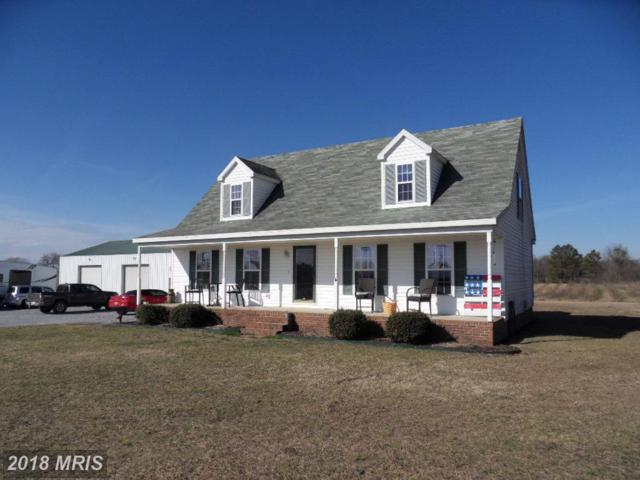 6230 East New Market-Ellwoo Road, East New Market, MD 21631 (#DO10155078) :: The Bob & Ronna Group