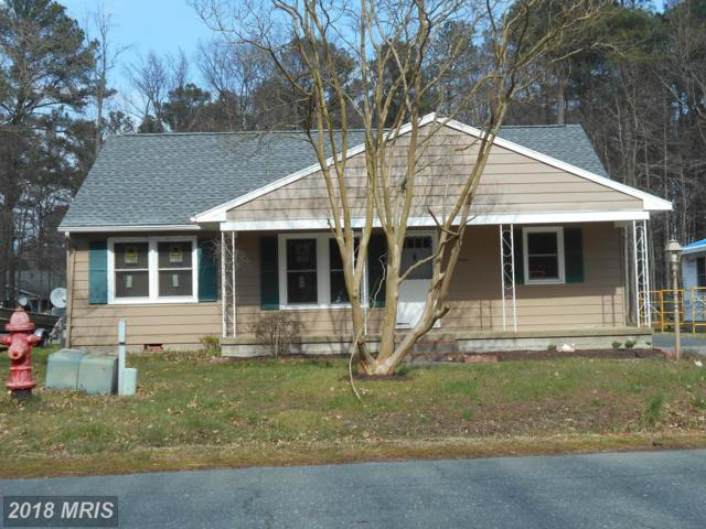 17 Bay View Avenue, Cambridge, MD 21613 (#DO10182498) :: RE/MAX Coast and Country