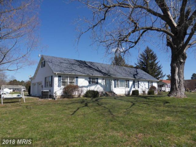 5401 Bonnie Brook Road, Cambridge, MD 21613 (#DO10189366) :: RE/MAX Coast and Country