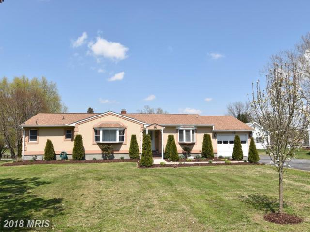 205 Linthicum Drive, Cambridge, MD 21613 (#DO10208307) :: RE/MAX Coast and Country