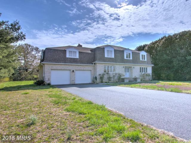 5523 Whitehall Road, Cambridge, MD 21613 (MLS #DO10211107) :: RE/MAX Coast and Country