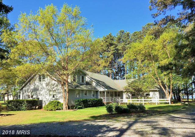 782 Hills Point Road, Cambridge, MD 21613 (#DO10250528) :: Colgan Real Estate