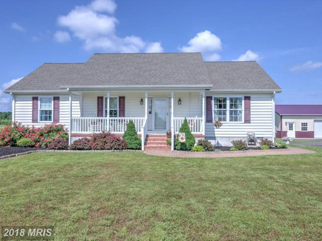 6733 Jayar Way, Hurlock, MD 21643 (#DO10251087) :: The Gus Anthony Team