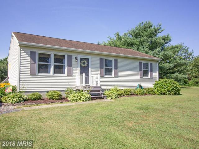 4323 Blink Horn Road, Hurlock, MD 21643 (#DO10285235) :: Keller Williams Pat Hiban Real Estate Group