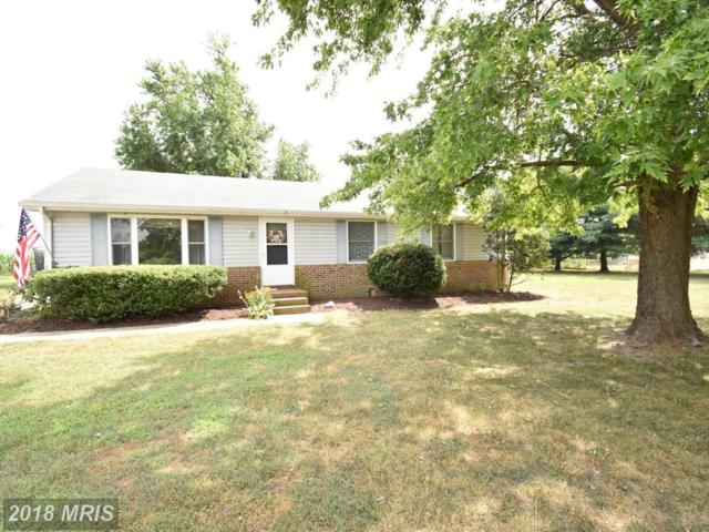 4109 Sandy Knoll Drive, East New Market, MD 21631 (#DO10300596) :: RE/MAX Plus