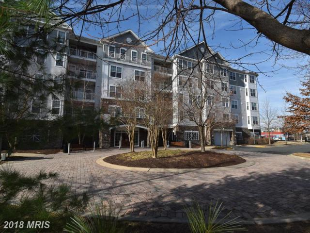700 Cattail Cove #301, Cambridge, MD 21613 (#DO10302634) :: RE/MAX Coast and Country