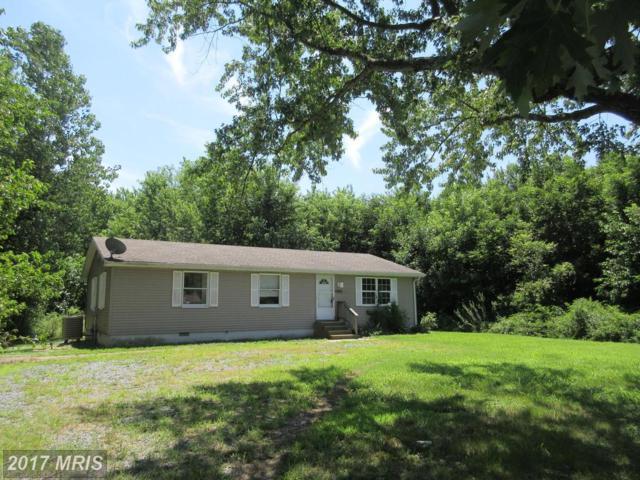 2420 Rock Drive, Cambridge, MD 21613 (#DO9010765) :: Jim Bass Group of Real Estate Teams