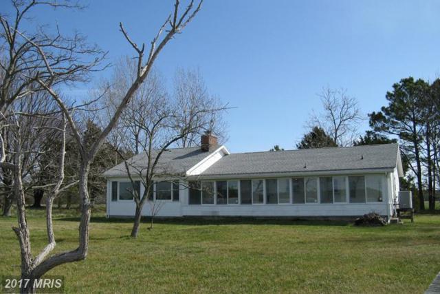 646 Taylors Island Road, Taylors Island, MD 21669 (#DO9872496) :: LoCoMusings