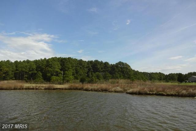 Pine Top Road, Taylors Island, MD 21669 (#DO9915520) :: LoCoMusings