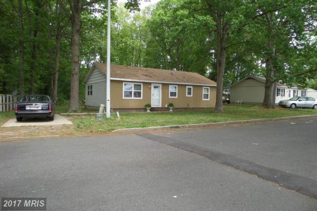128 Gold Rush Lane, Hurlock, MD 21643 (#DO9943865) :: LoCoMusings