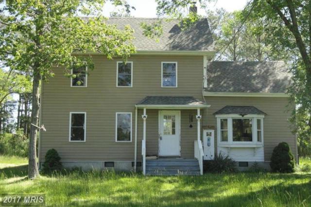1807 Crocheron Road, Toddville, MD 21672 (#DO9958759) :: LoCoMusings