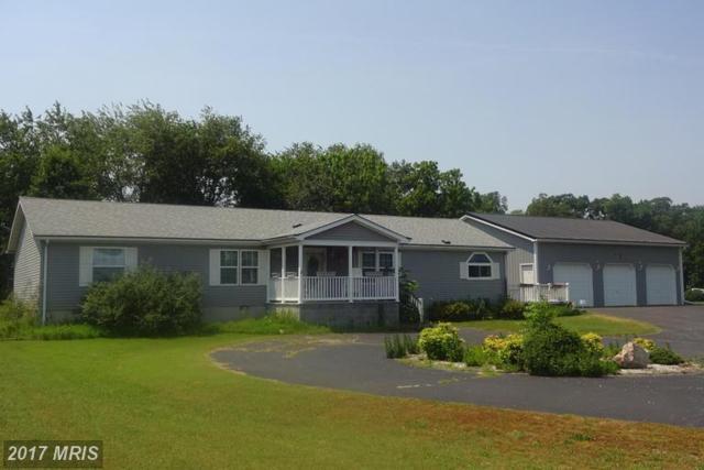 6614 Briar Patch Road, Hurlock, MD 21643 (#DO9977170) :: LoCoMusings