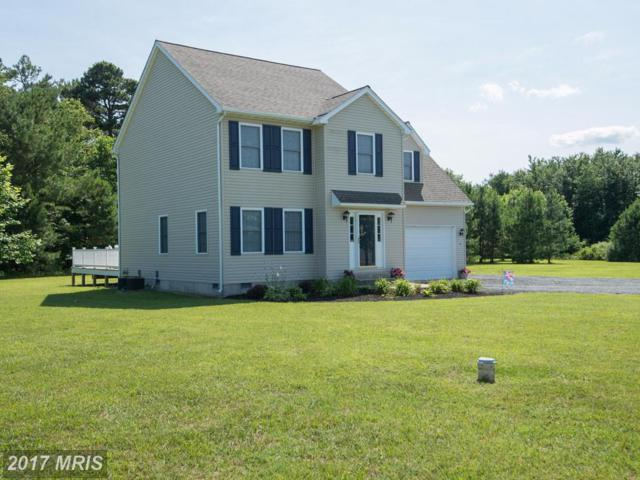 4237 Alley Berry Drive, Hurlock, MD 21643 (#DO9991298) :: LoCoMusings