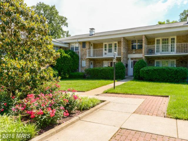 1132 Washington Street #201, Falls Church, VA 22046 (#FA10259388) :: Browning Homes Group