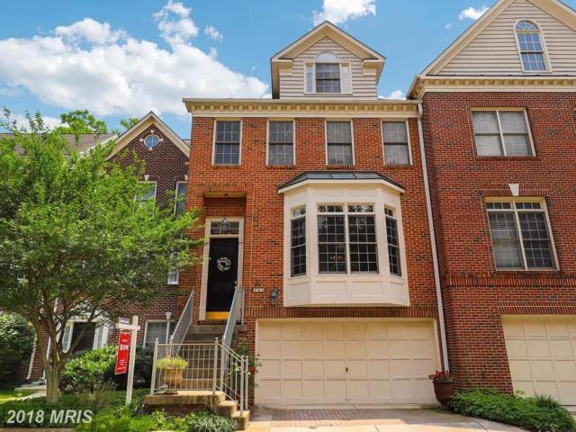 145 Rees Place, Falls Church, VA 22046 (#FA10286550) :: TVRG Homes