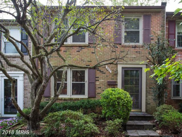 295 Gundry Drive, Falls Church, VA 22046 (#FA10347314) :: TVRG Homes