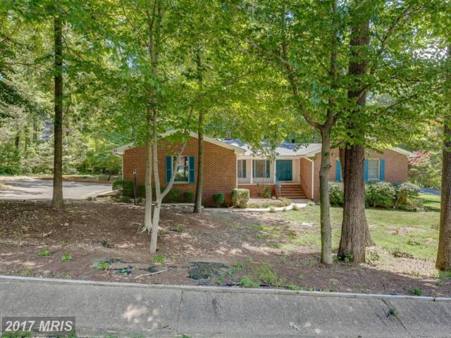 17 Seneca Terrace, Fredericksburg, VA 22401 (#FB10015866) :: Arlington Realty, Inc.